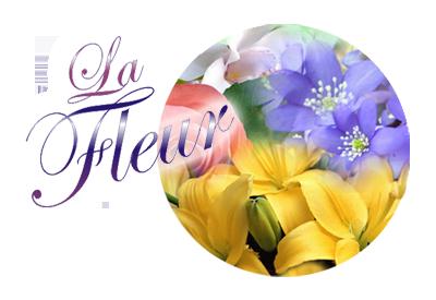 Premial Влажные салфетки очищающие цветочные